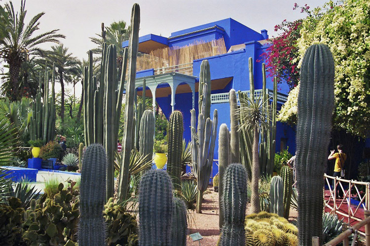Marrakesch der wundersame garten jardin majorelle for Le jardin majorelle