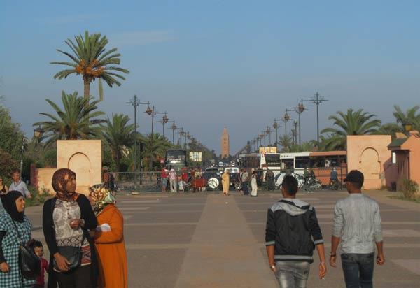 Foto in den Menara-Gärten von Marrakesch mit Blick auf die Moschee