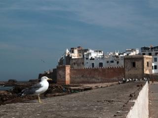 Essaouira Mogador