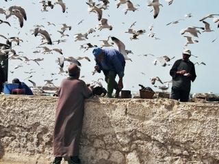 Essauoira Hafen